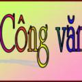 Cong van